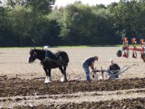 REsettling the plough