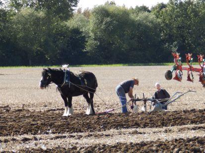 REsettling the plough