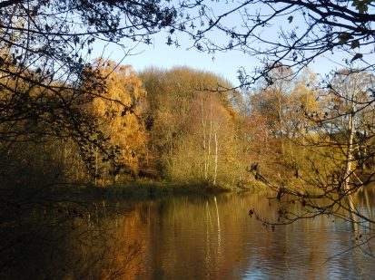 Small Lake - Rufford Abbey