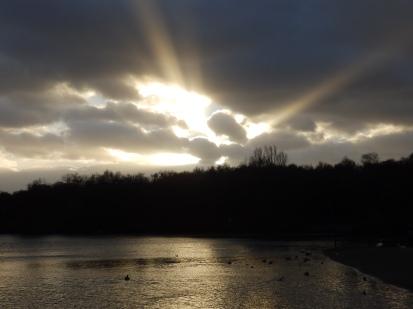 Sunlight over Notts