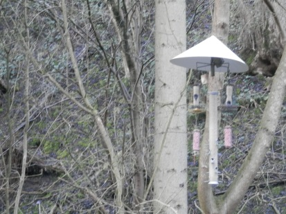 Bird feeders Via Gallia, Cromford