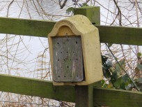 Bug Hotel - Attenborough
