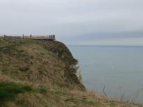 Viewpoint at Bempton Cliffs