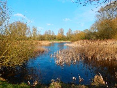 Orton Mere - Landscape Filter