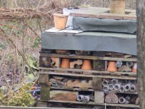 Bug Hotel - Carsington Water