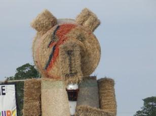 Straw Bale Bowie Bear
