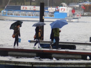 Umbrellas - Windermere