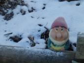 Garden Gnome - Mencap Garden