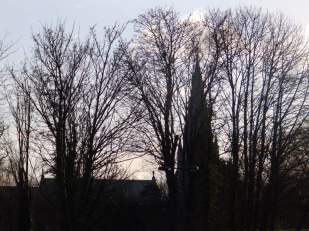 Steeple behind trees, Spalding