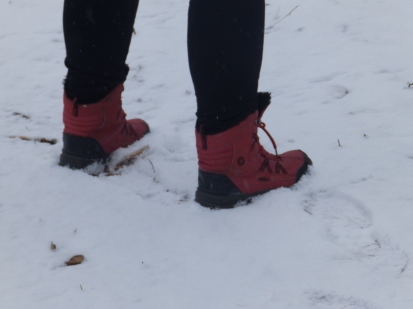 Boots in the snow