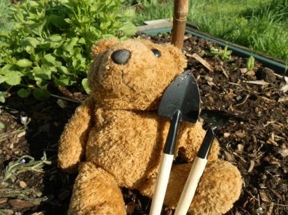 Bear with tools