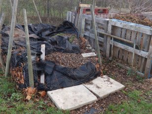 Leaf mould cage - MENCAP garden