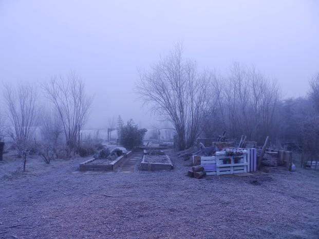 Mencap Garden - Wilford