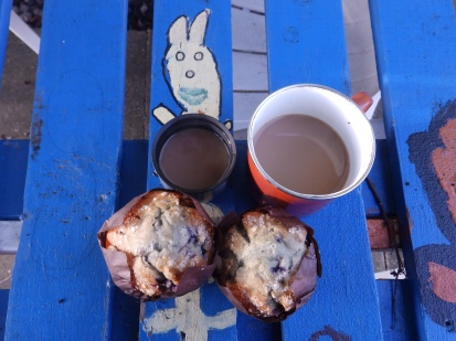 Coffee and muffins in the garden