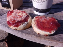 Tea, scones and sunshine. Bettys, Harlow Carr