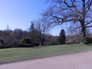 Harlow Carr View