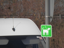 Wetherby Services Dog Walking Area