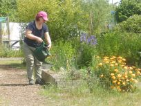 Julia working in the Mencap Garden